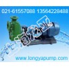 厂家供应32FPZ-11D直联强抗腐耐腐泵