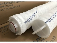 凝结水除铁过滤器大通量保安过滤器滤芯